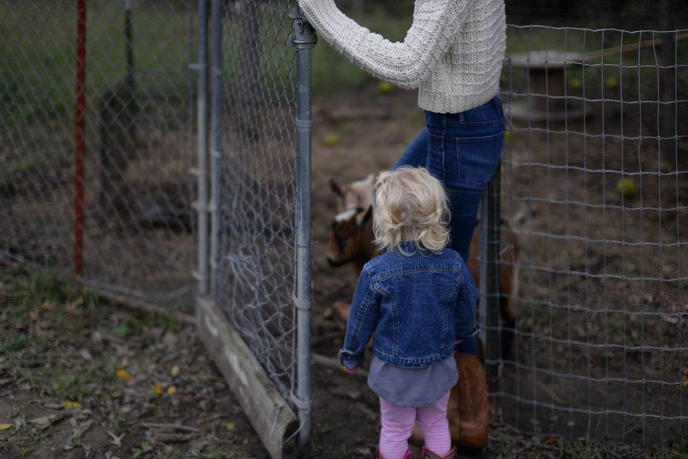 Oklahoma Farmhouse Tour on Cottage Hill | cottagehill.co150.jpg