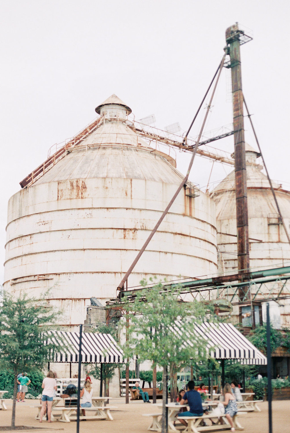 The 7 Things You Must Do at Magnolia Market on Cottage HIll | cottagehill.co36.jpg