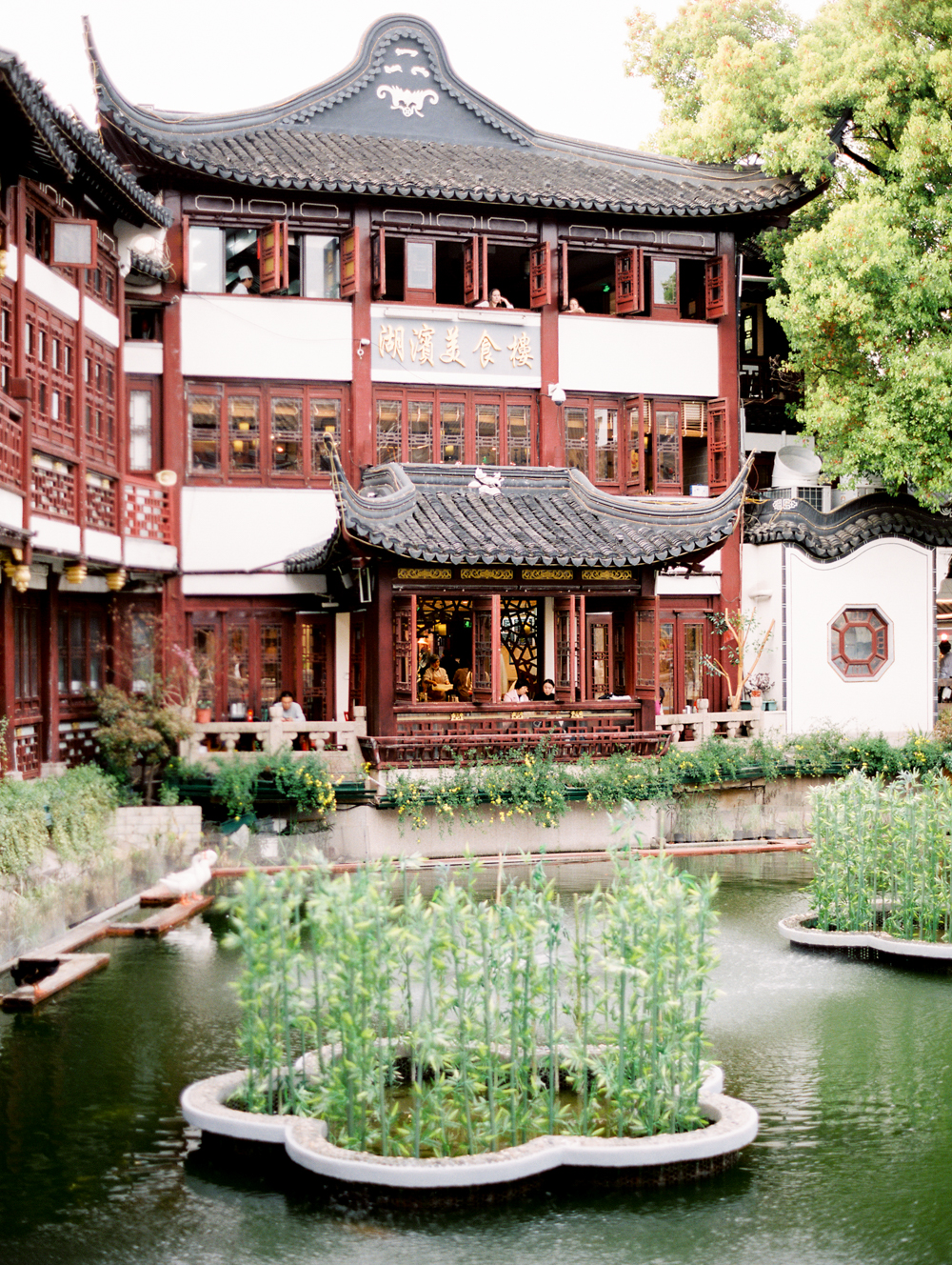 © Cottage Hill, LLC _ China by Wiliam Trang _ cottagehill.co36.jpg