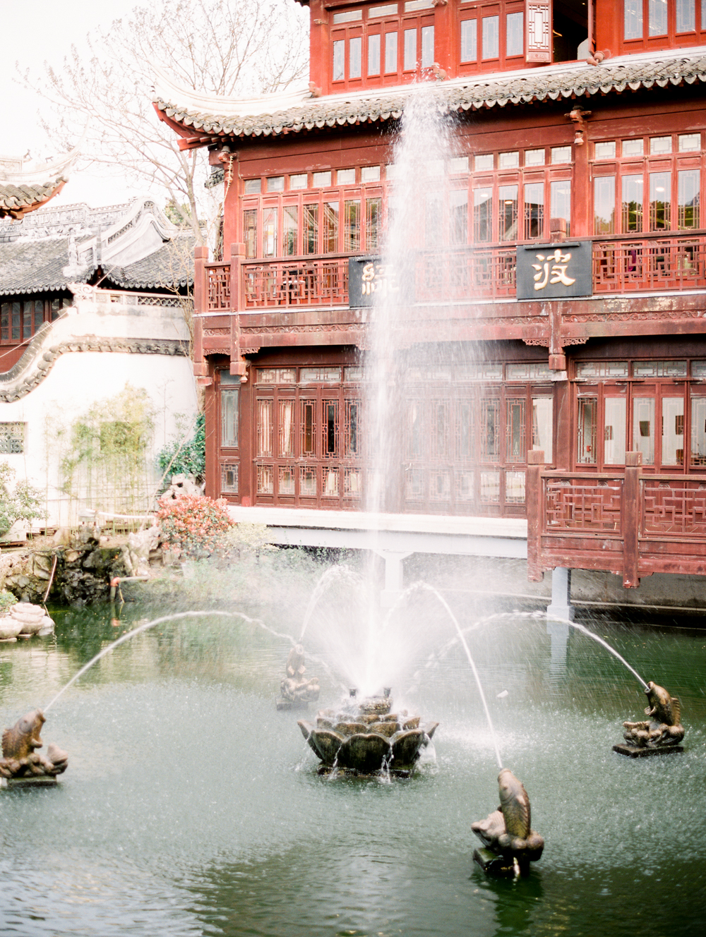 © Cottage Hill, LLC _ China by Wiliam Trang _ cottagehill.co38.jpg