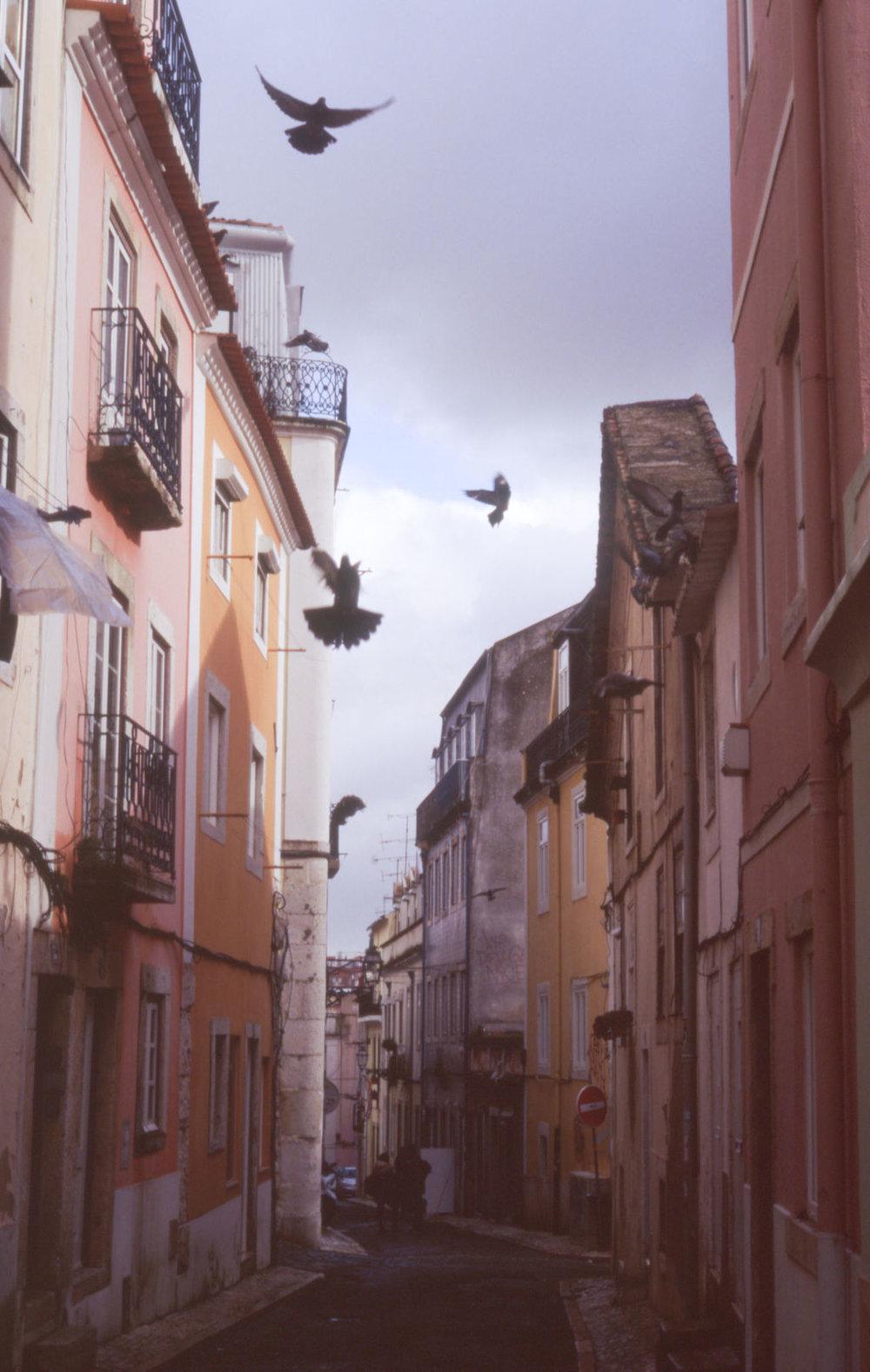 © Cottage Hill, LLC   cottagehill.co   Lisbon on Film27.jpg