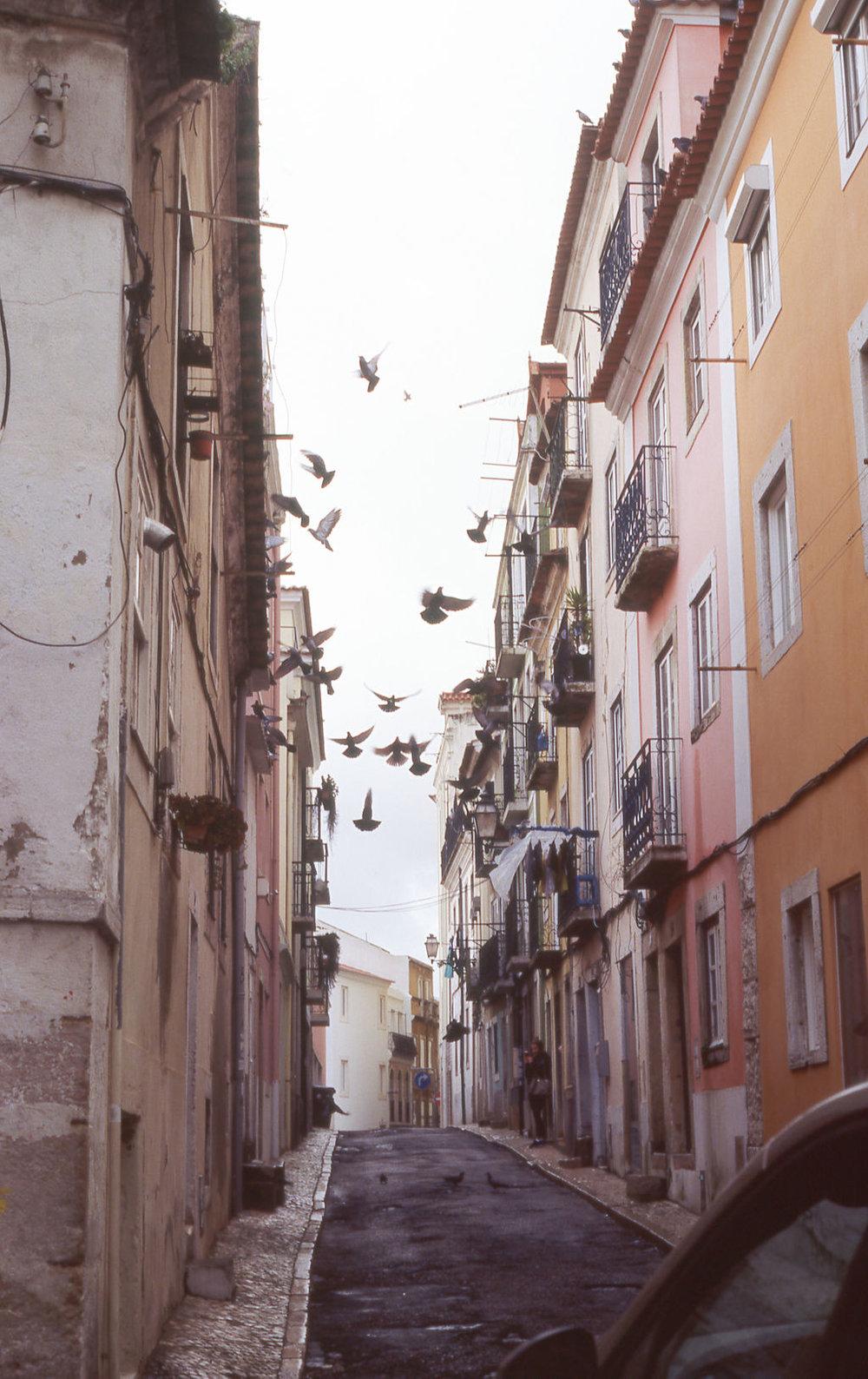 © Cottage Hill, LLC   cottagehill.co   Lisbon on Film28.jpg