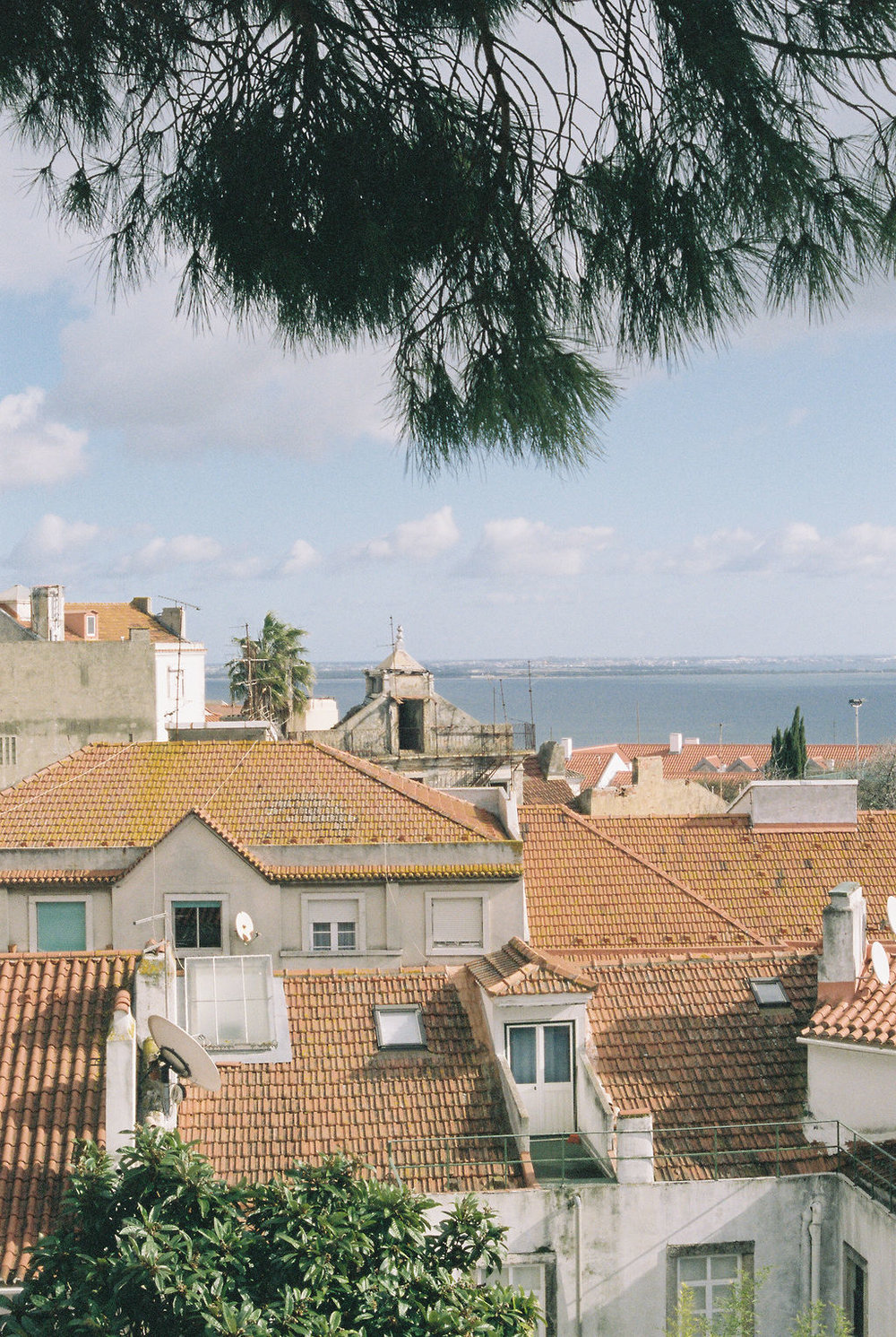 © Cottage Hill, LLC   cottagehill.co   Lisbon on Film53.jpg