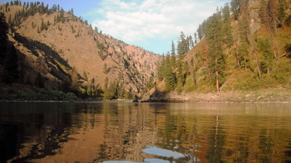 beautiful from down stream from a camp on the Salmon River