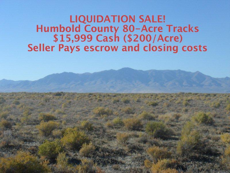 LIQUIDATION SALE OF HUMBOLDT 80 Acre Tracks!