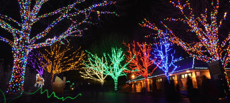 lyft dc x zoolights - Christmas Lights In Dc