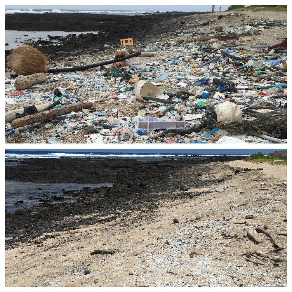 Before and after photo that I took during one of  Hawaii Wildlife Fund's  cleanup events.
