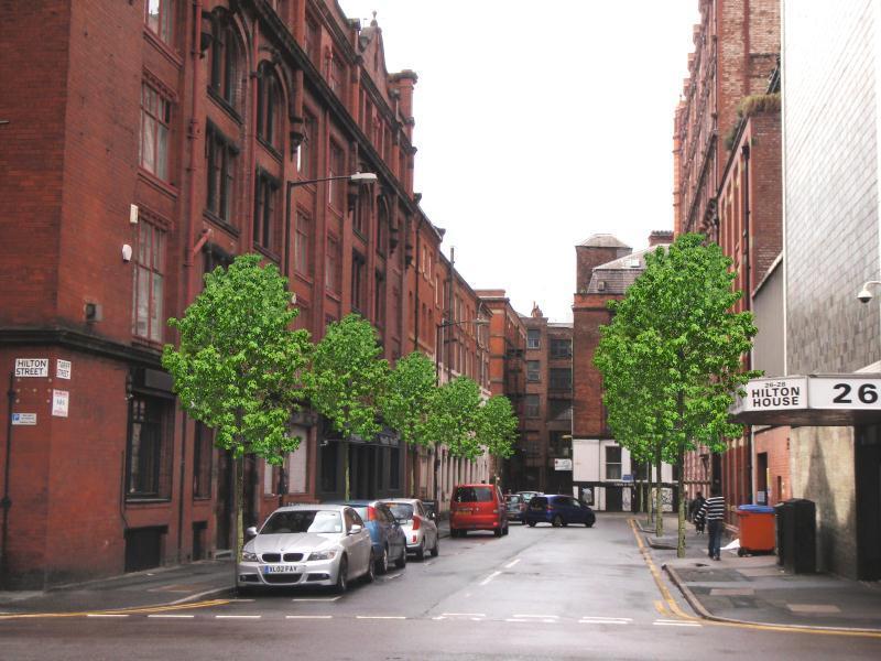 Tariff St Street Trees