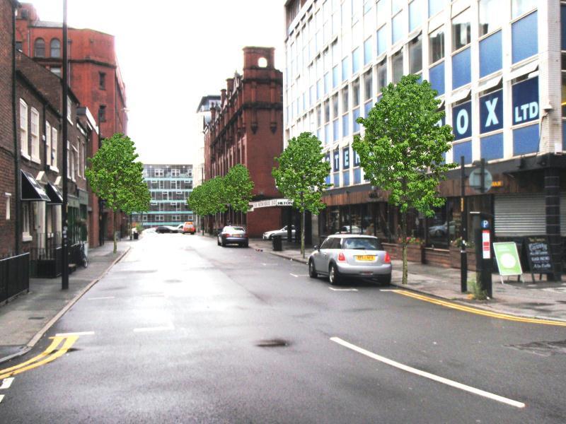 Hilton St Street Trees