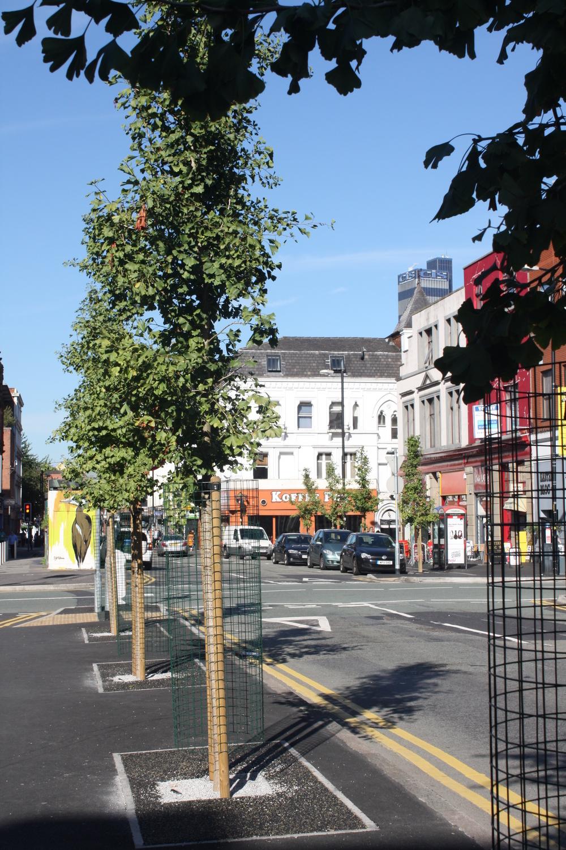 Stevenson Square Greening Project