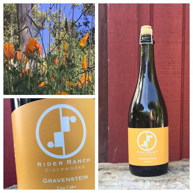 Our newest release, oak aged Gravenstein cider, a sparkling wine with notes of vanilla and pear.  Come visit us for a private tasting by appointment only or at the the West Side Farmers Market off Mission St in Santa Cruz from 9-1pm Saturday.