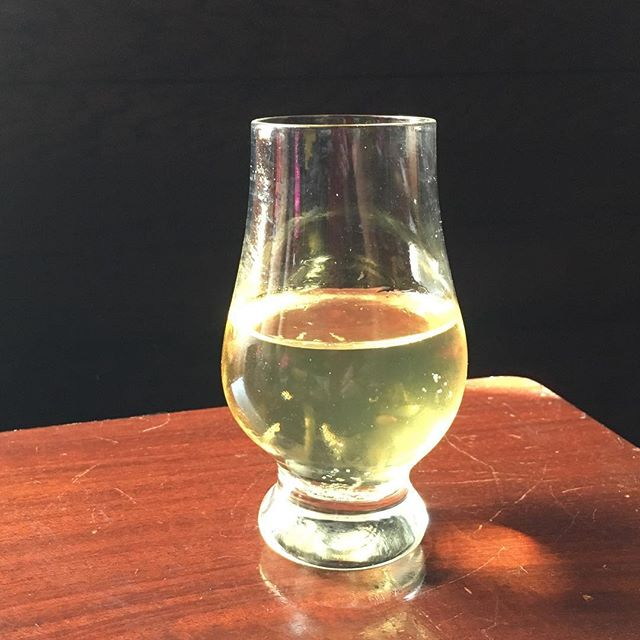Sampling our Pre-prohibition Pippin. All I can say is cider made from tree ripped apples off of 100yo trees does make a huge difference. I have never tasted a cider like this. I think this is the best cider we have ever made.