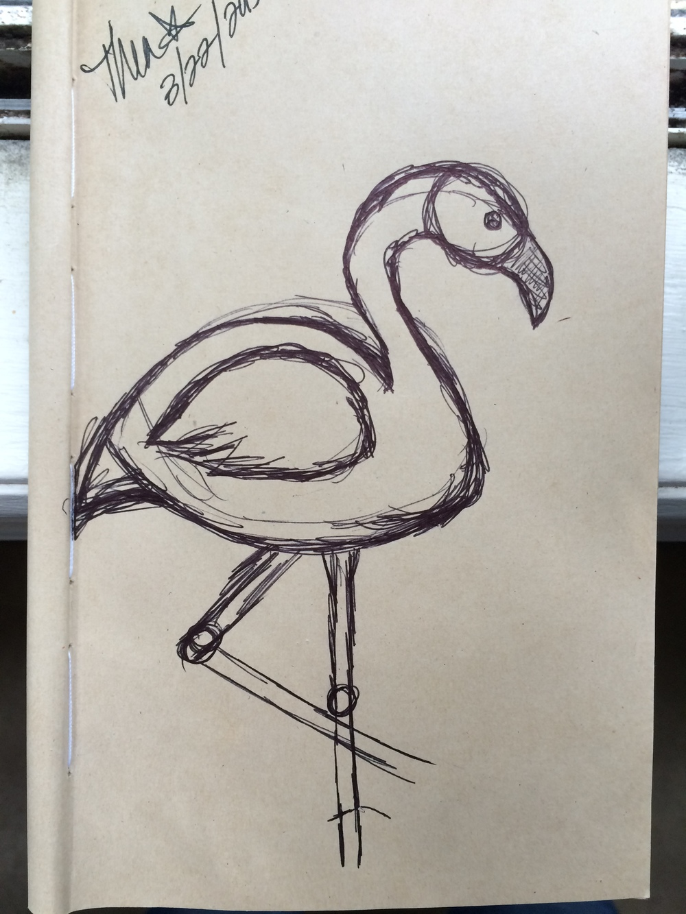 Thea's original flamingo sketch.
