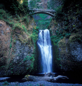 Photo from  Travel Oregon