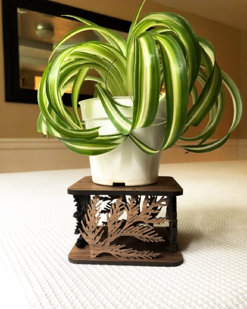 Small Cedar Leaf Plant Stand - 6 by 6 Arts