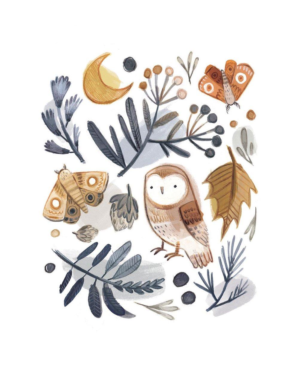 Owl and moth LR.jpg