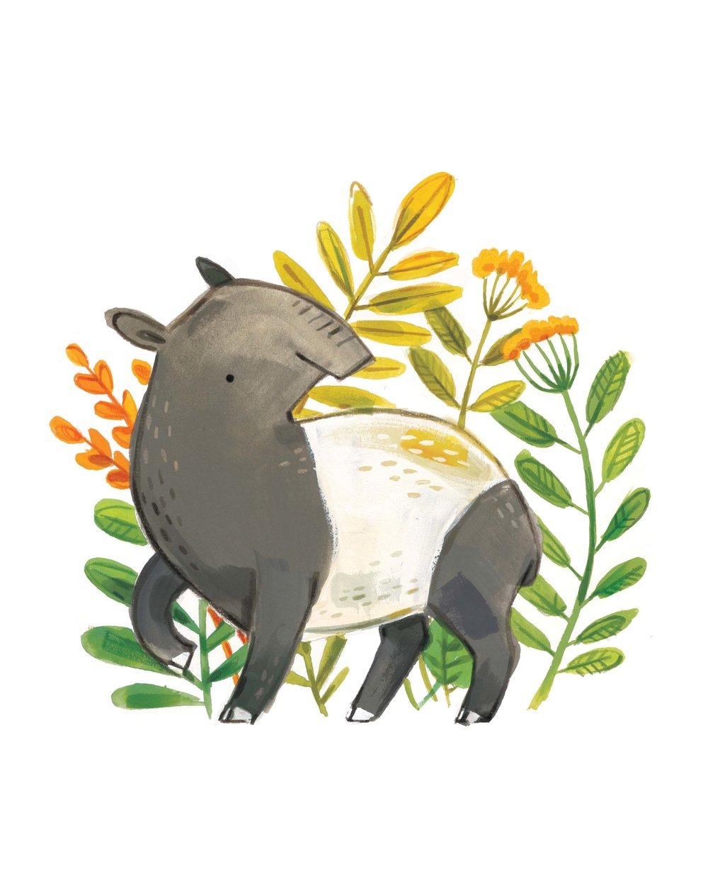 tapir LR.jpg
