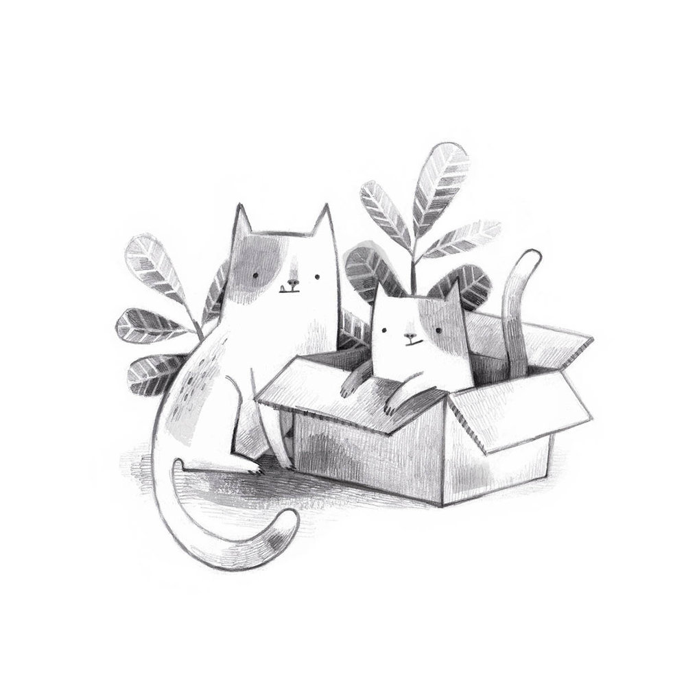 cats and a box LR.jpg