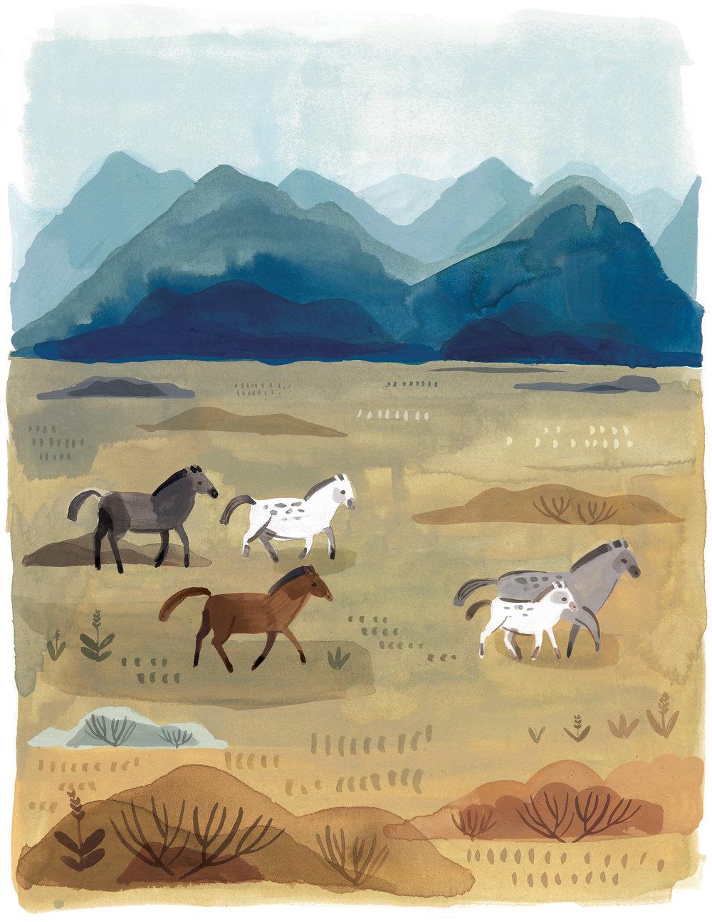 Wild Horses LR.jpg