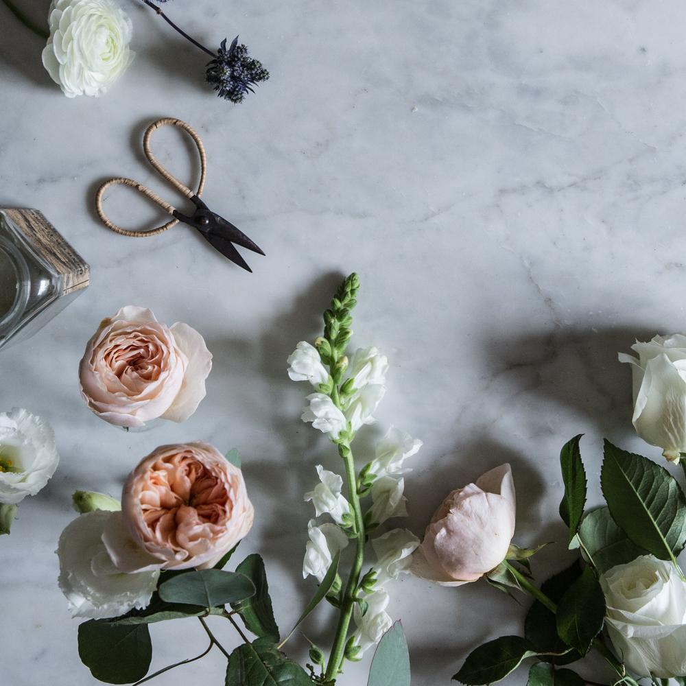 cabbage rose.jpg