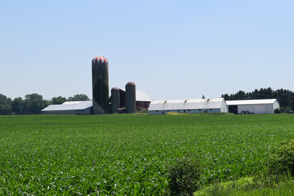 Farmland in Aylmer, Ontario