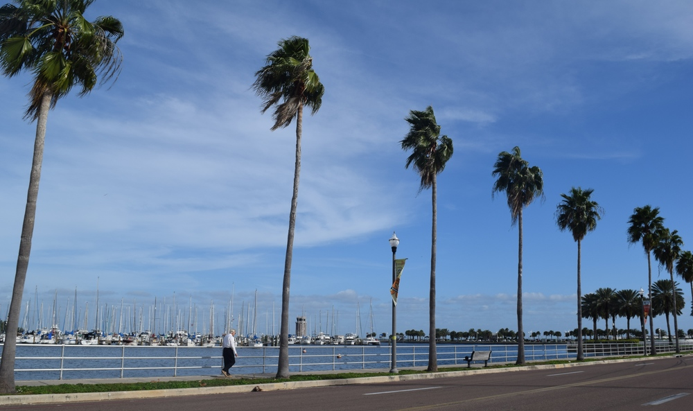 Waterfront in downtown St. Petersburg, Florida