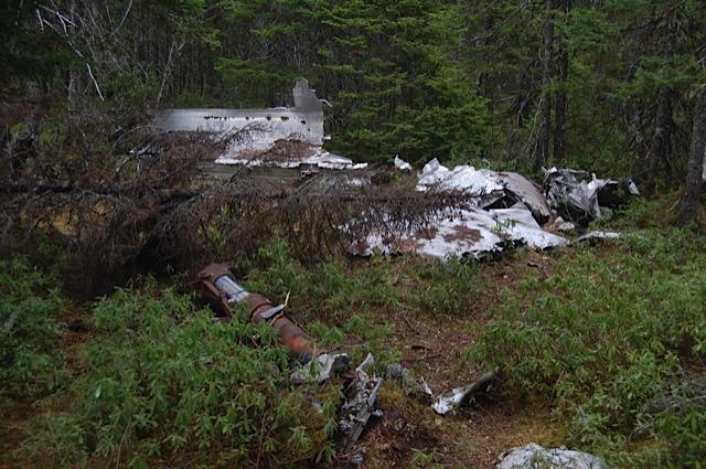 WWII plane crash site, Gander, NL