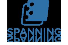 spanning-logo.jpg