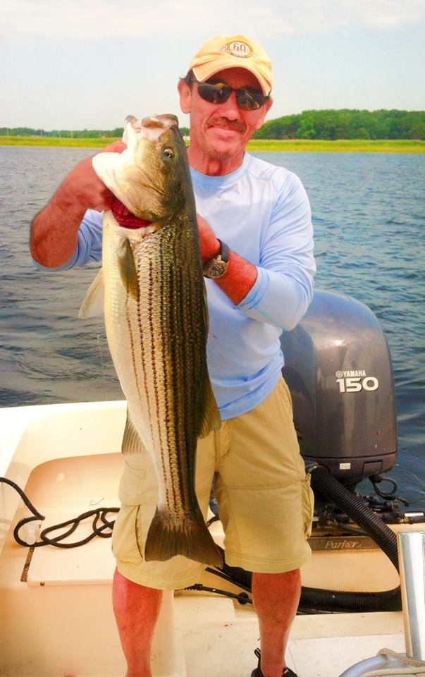striper merrimack river charters fishing fish report mackerel manolin surf fishing boat fishing private charter vacation newburyport