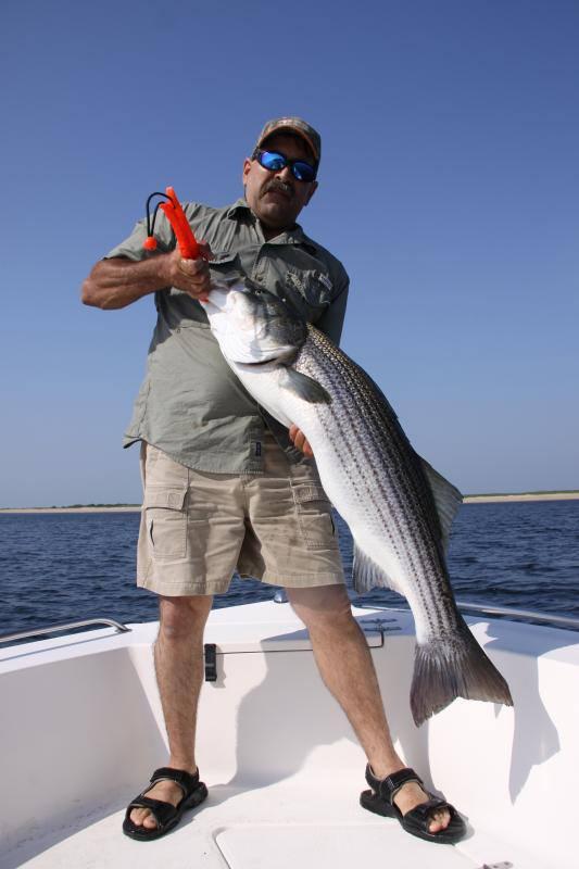 Striped bass charter newburyport.jpg