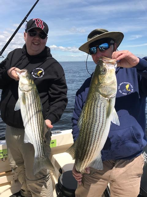 The English Boys Double up on keepers in the Merrimack River in Newburyport!