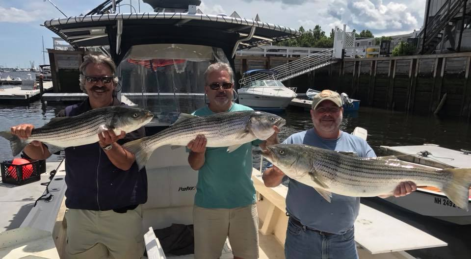 charter boat captain striped bass newburyport .jpg