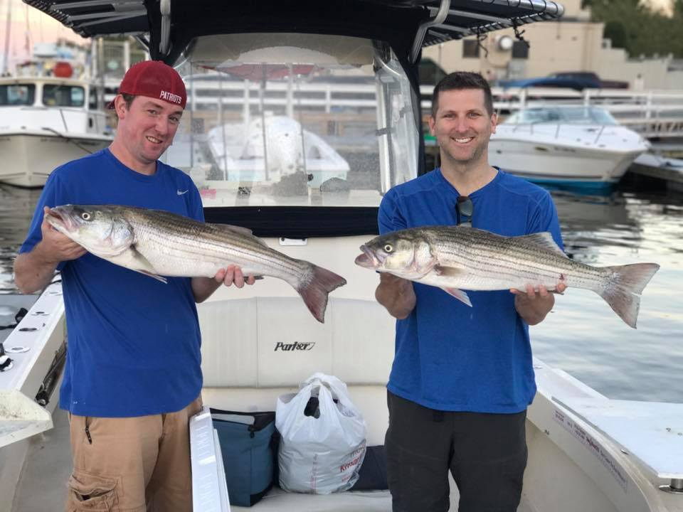 striped bass live bait charter mackerel captain boat .jpg