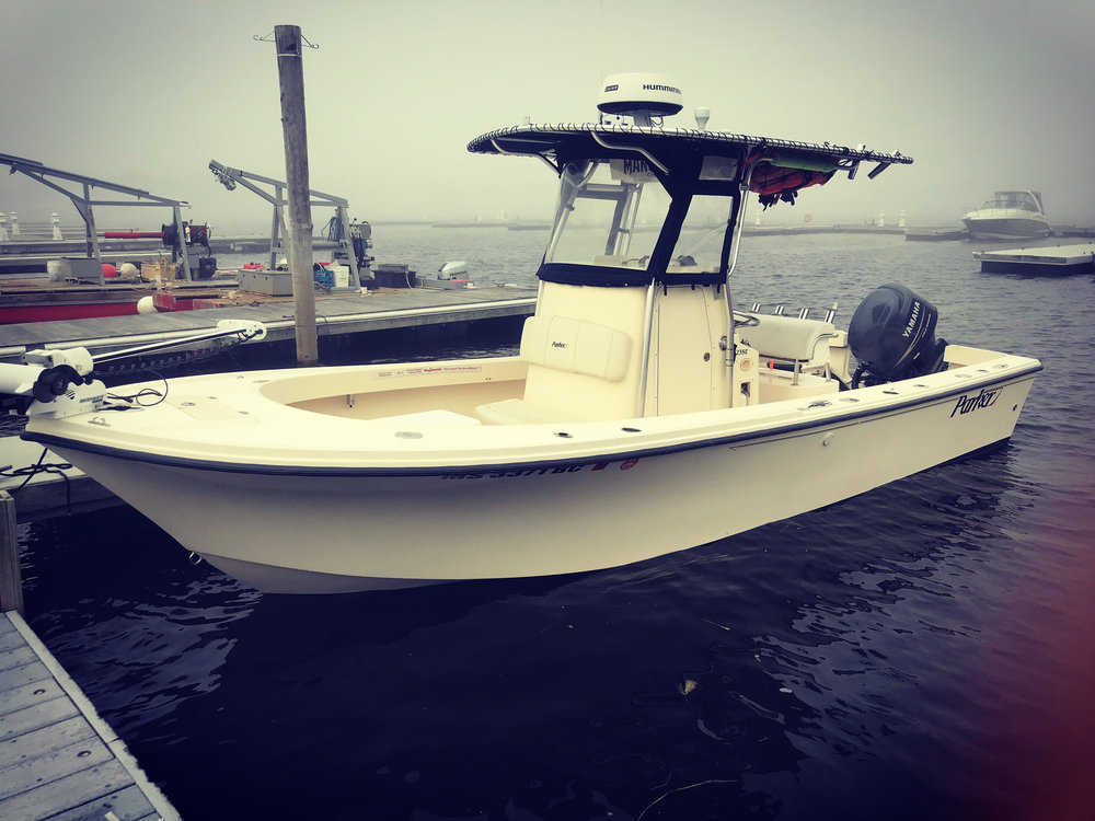 Manolin Charters 978 314 9397 Merrimack River Fish Reports