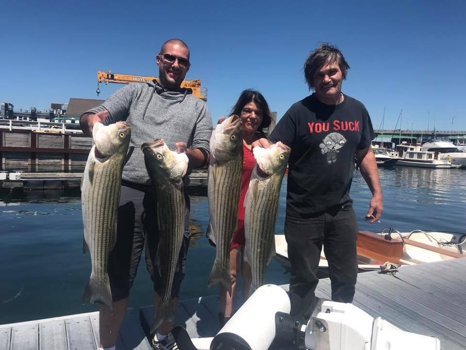 striped bass charter newburyport ma.jpg