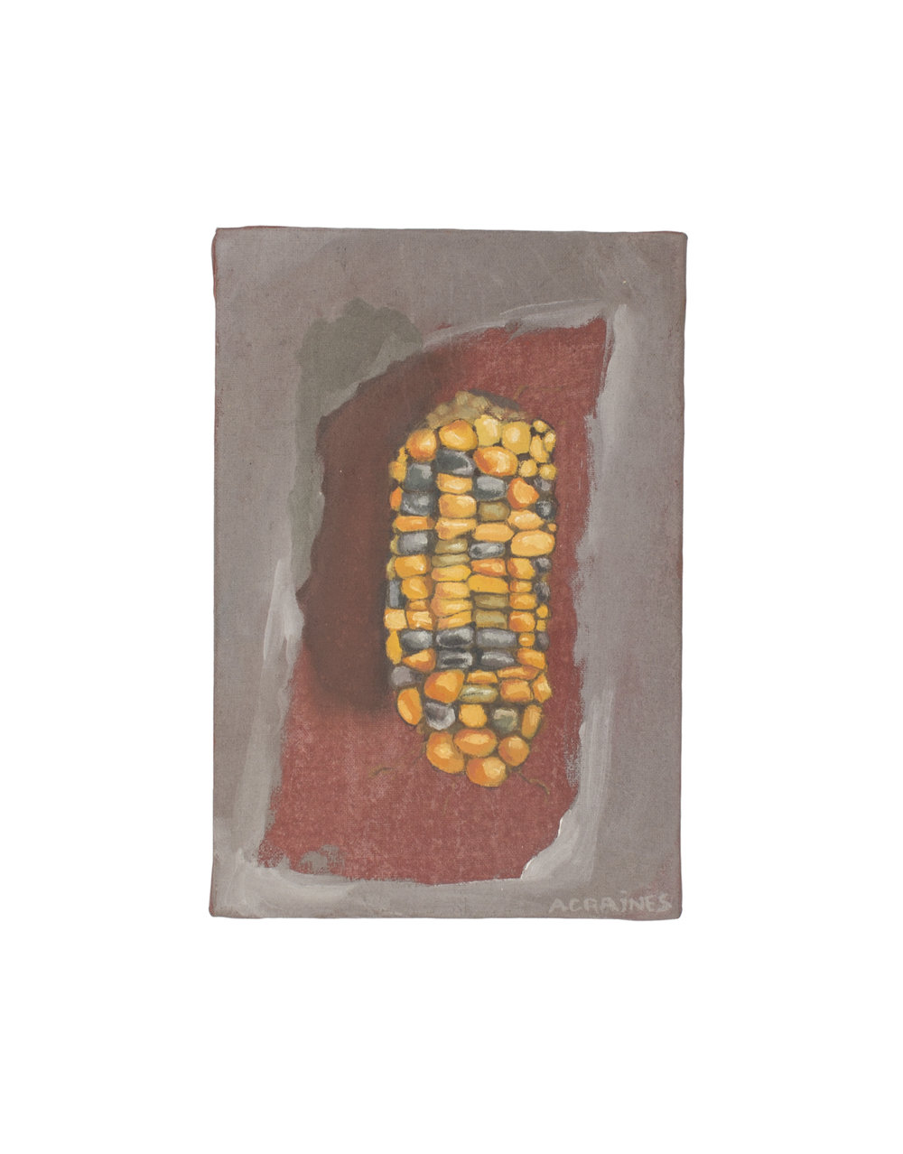 "Maize // 4"" x 6"" // Oil on MDF"