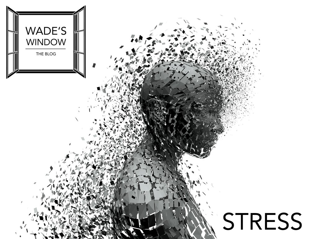 Stress #2.jpg
