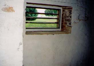 Same windows from inside the basement/kitchen.