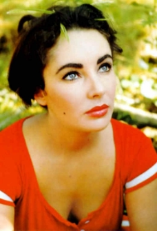 Elizabeth Taylor was the inspiration for Tillie Reese.