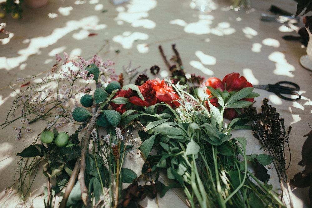 Primavera Flora (324).jpg