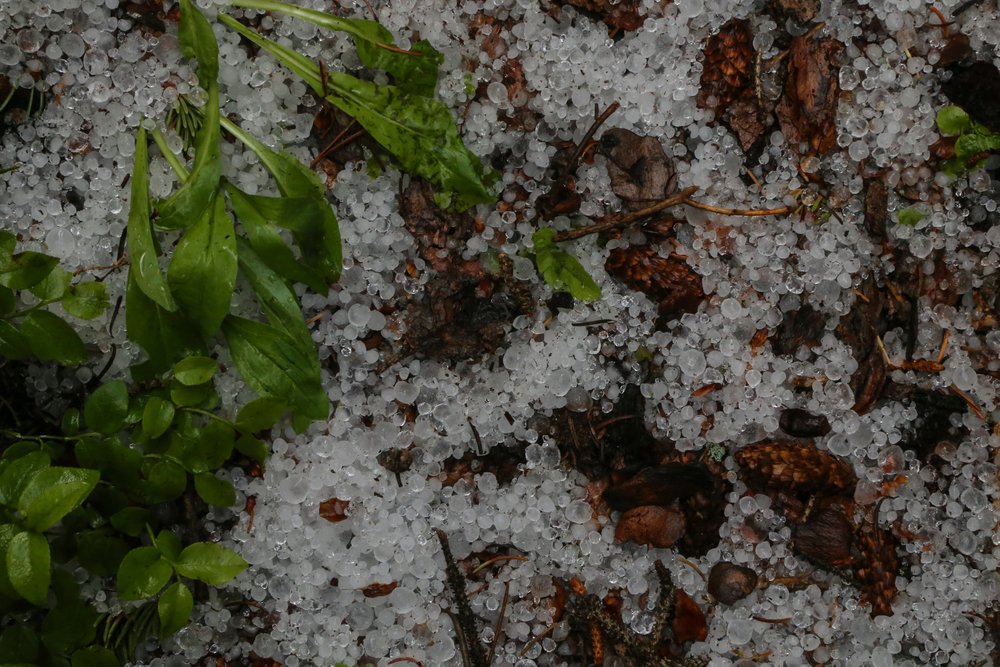 Hail in July.  Classic Colorado