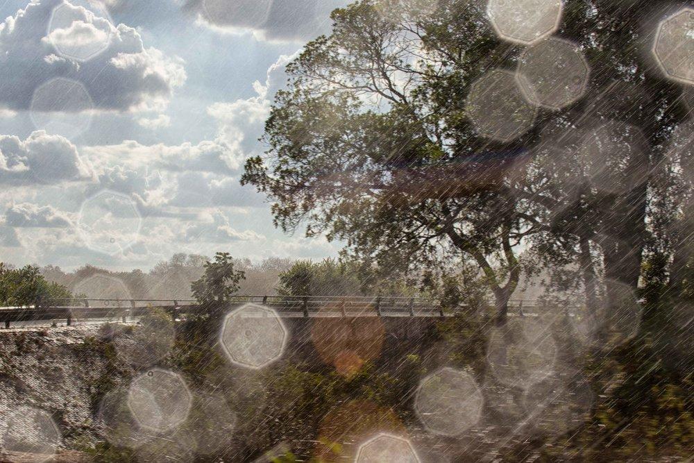 Kruger & London-1167-Edit.jpg
