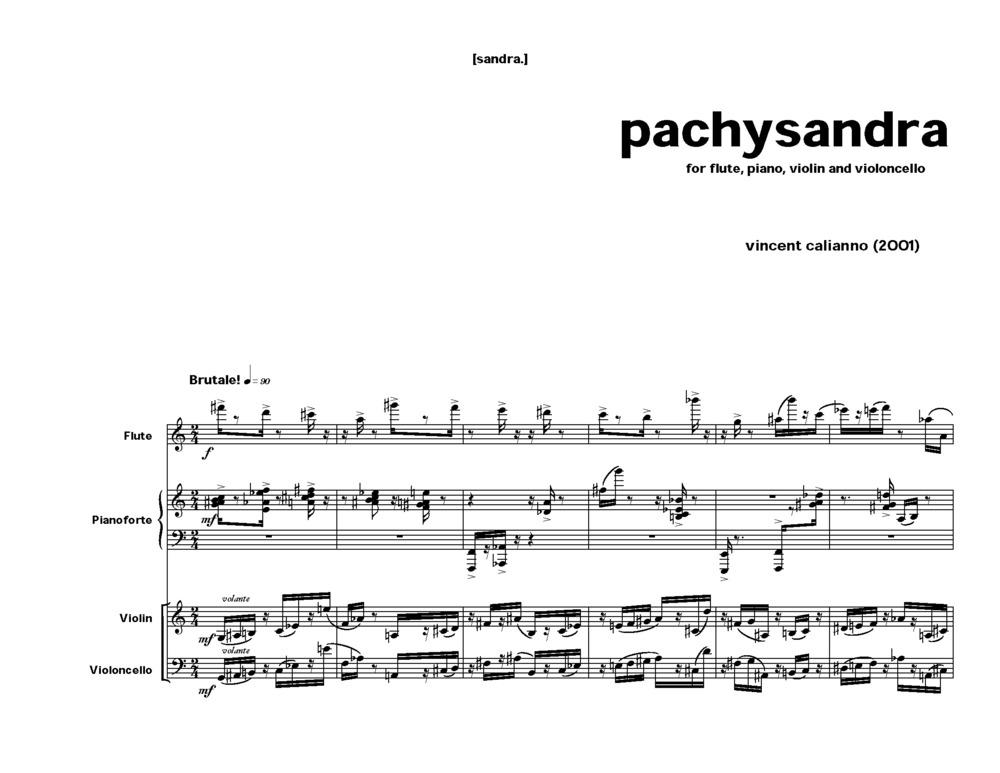 164 - pachysandra_Page_03.jpg