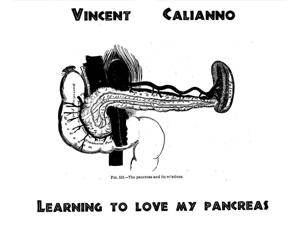 096 - Learning to Love my Pancreas_Page_01.jpg