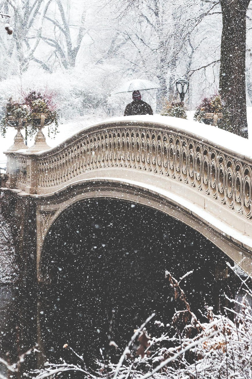 Snowy central park bridge ITCHBAN.com