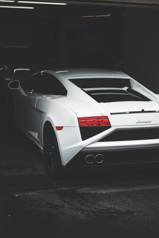 White Lamborghini ITCHBAN.com