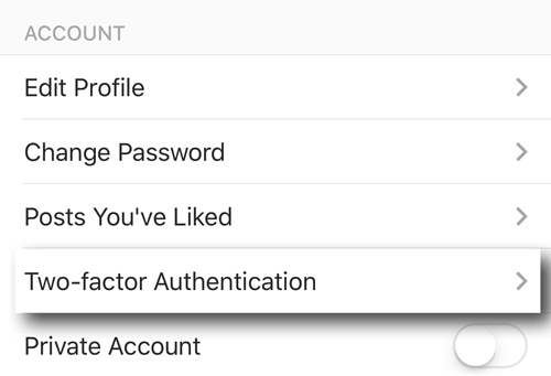 INSTAGRAM-SECURITY-AUTHENTICATION-OPTION