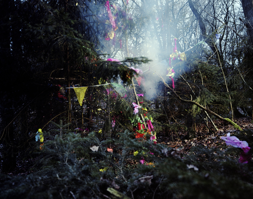 NATURE PARTIES, 2007 /125-100 cm, lightjetprint framed with museum glass