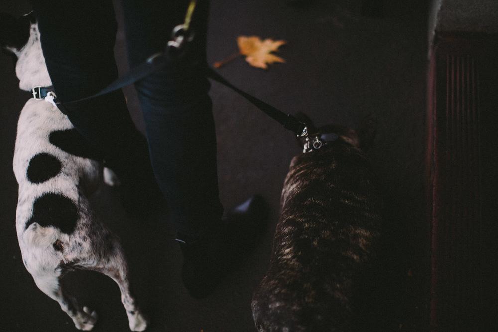 Melbourne Engagement-Dean Raphael-2.jpg