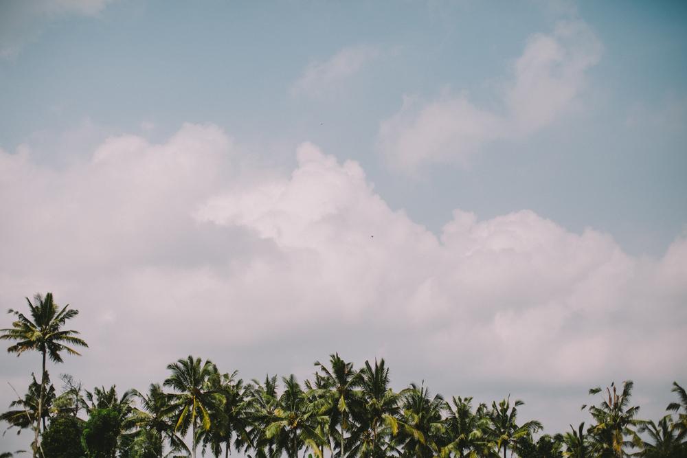 Bali Aug 15-Dean Raphael-23.jpg